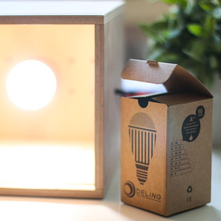 Ampoule LED Bombus 5B E27