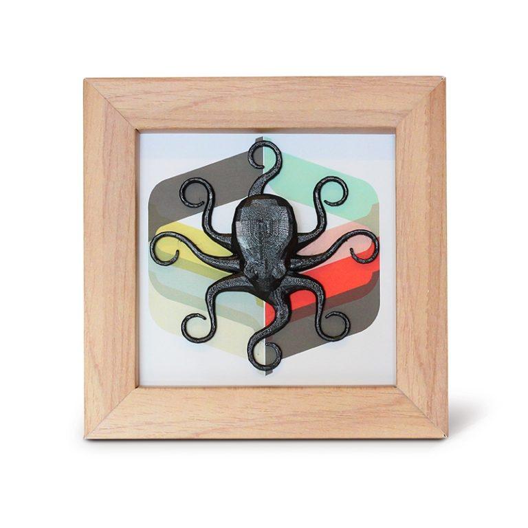 Cadre Pieuvre 3D