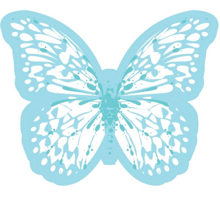 5 papillons colorés
