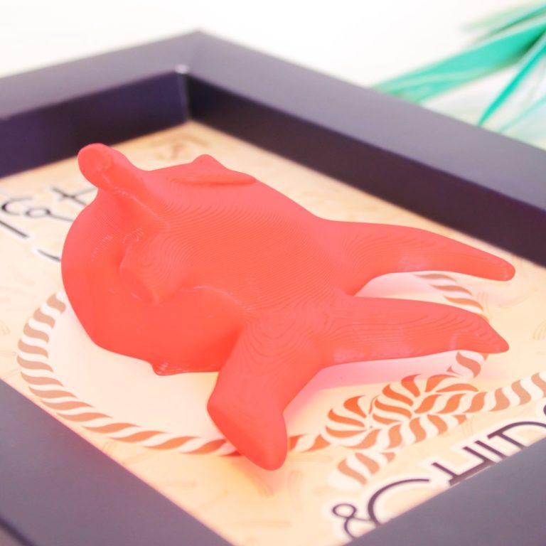 Cadre Poisson Rouge 3D