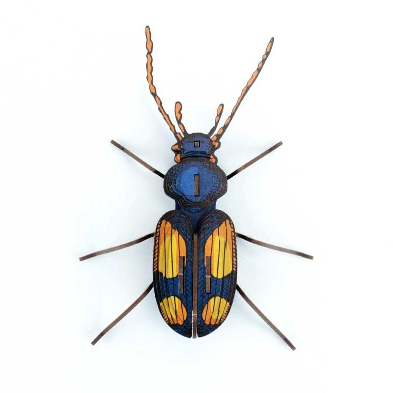 Insecte - Chatouillus