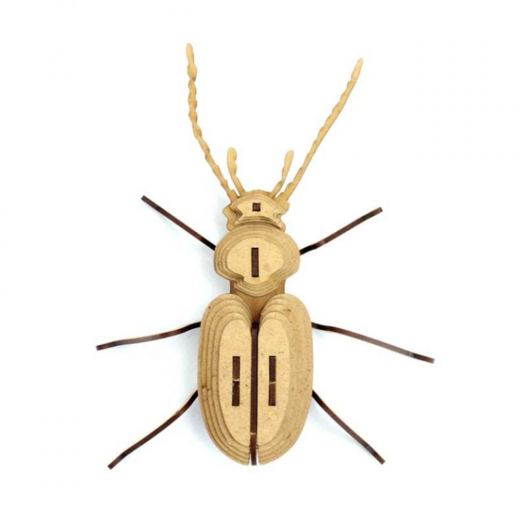 Tickle Bug