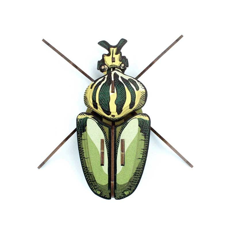 Insecte - Globulus giganticus