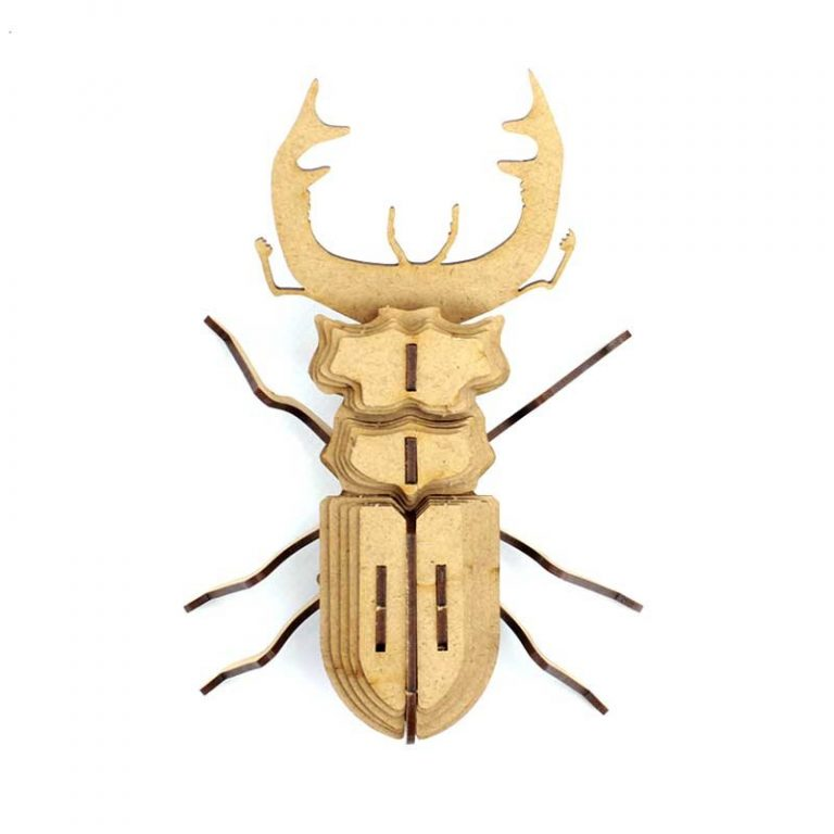 Insecte - Mordicus