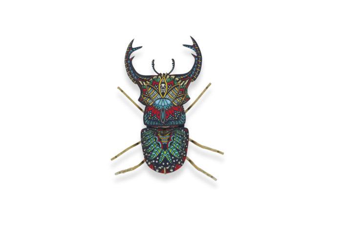Insecte - Senior Nachos 1 3701310200384