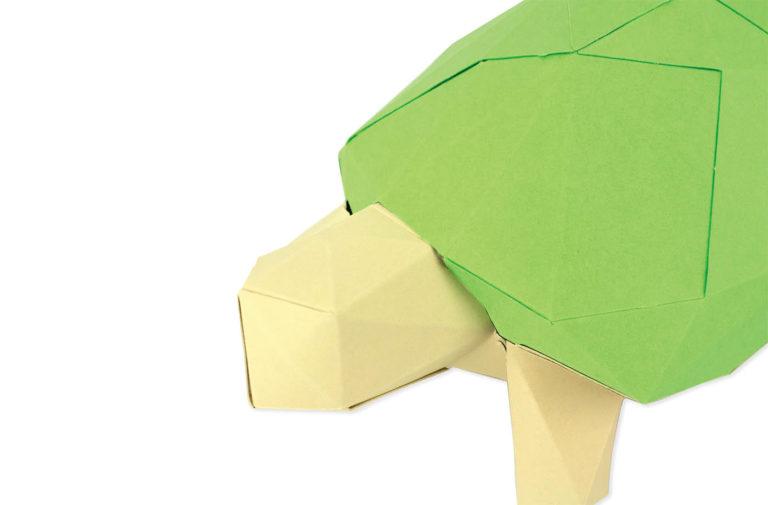 Tortue en papier 3D 3 3760271839651