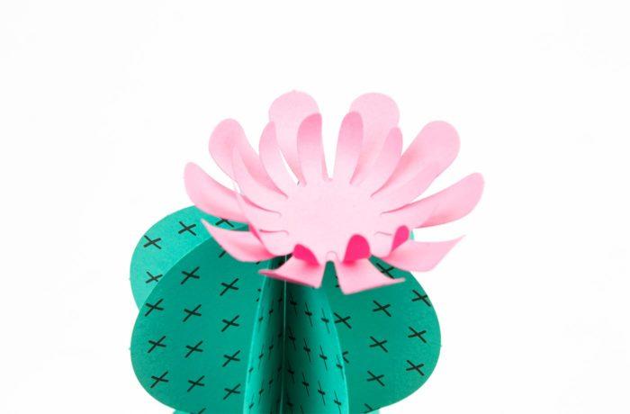 Paper plants 4