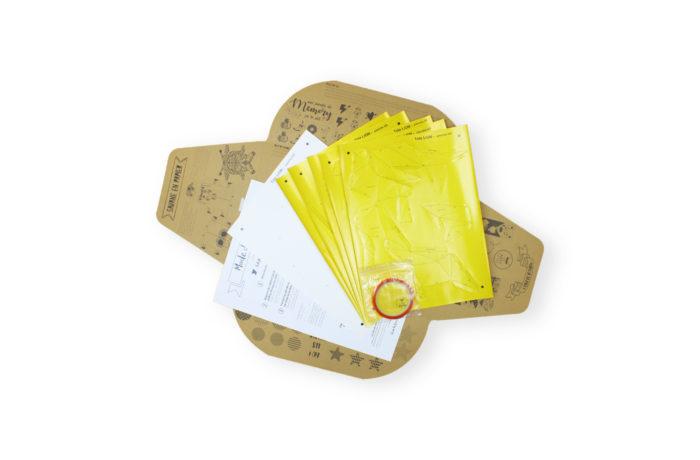 Tête de lion en papier 3d 5 3650049002854