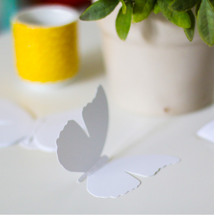 Papillon blanc 2 3650049000768